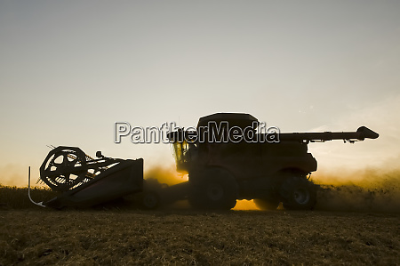 a combine harvester works in a