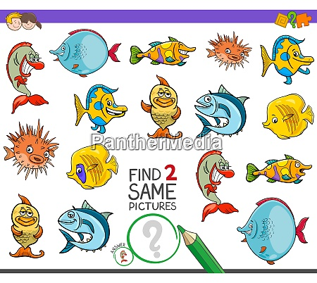 find two same fish characters game