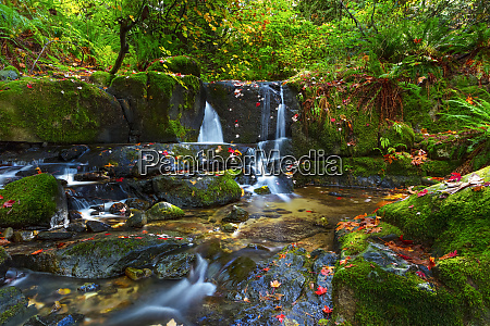 cascading waterfalls in anderson creek with