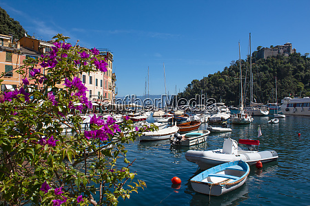beautiful bay with colorful houses in