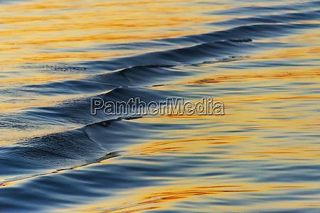 water ripples chobe river chobe national