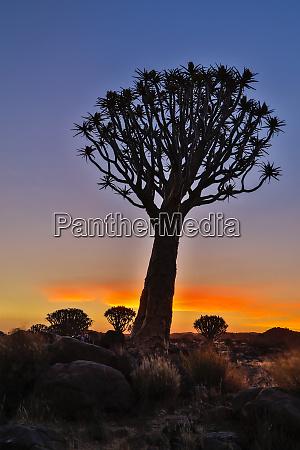 africa namibia keetmanshoop sunset at the