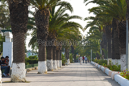 seaside promenade bizerte tunisia north africa