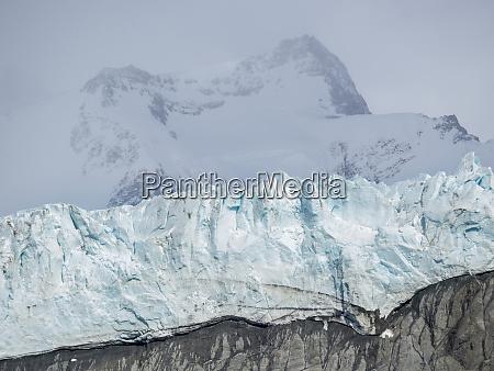 gold harbor with mighty bertrab glacier
