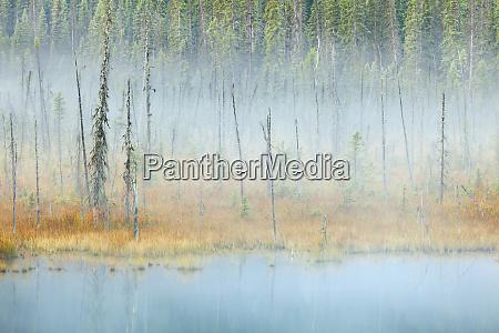 canada british columbia mount robson provincial