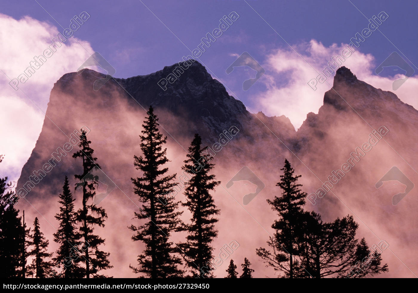 trees, silhouetted, against, mist, and, mountains - 27329450