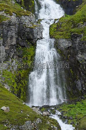 iceland westfjords jokulflrdir lonagfjordur nature reserve