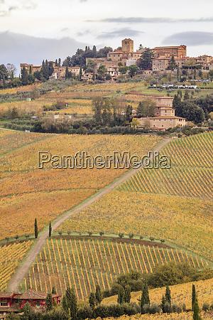italy tuscany chianti panzano hill town