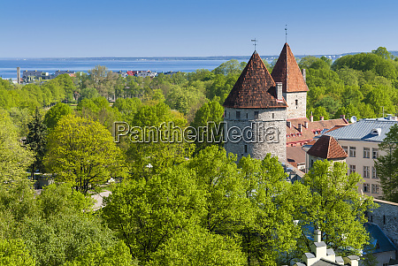 view of tallinn from toompea hill