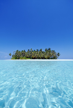 a deserted tropical island covered with