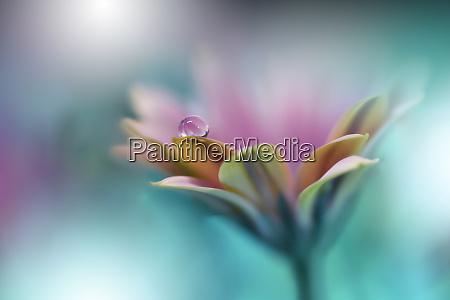 beautiful green nature backgroundcolorful artistic wallpapernatural