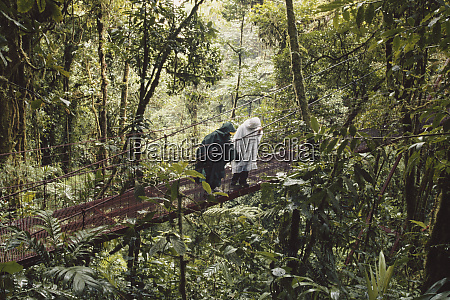 monteverde costa rica monteverde cloud forest