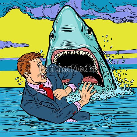 the shark attacks the businessman man