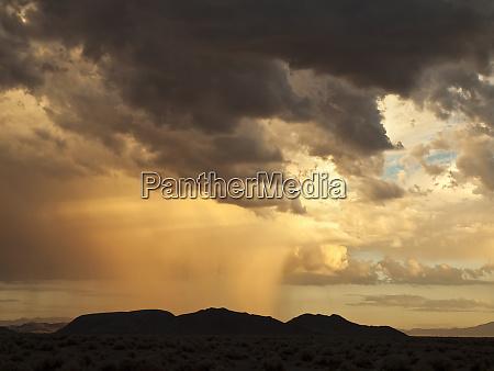 usa california mojave national preserve desert