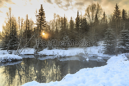 winter scenic near fairbanks alaska