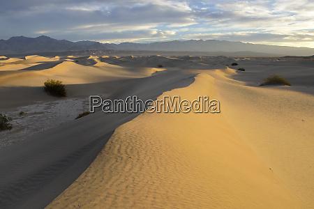usa california death valley mesquite flat