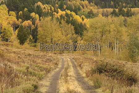 usa colorado san juan mountains dirt