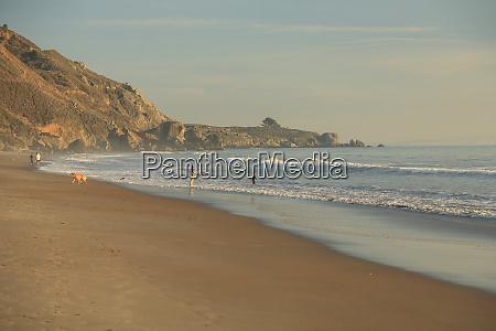 muir beach golden gate national parks