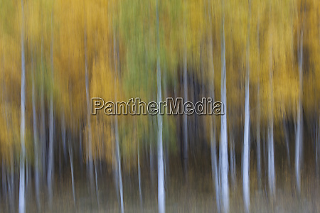 usa colorado san juan mountains abstract