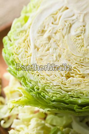 raw white cabbage