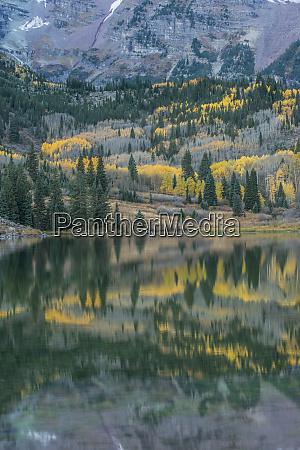 usa colorado white river national forest
