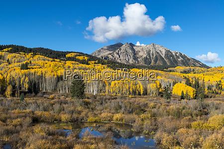 beaver pond and fall foliage and