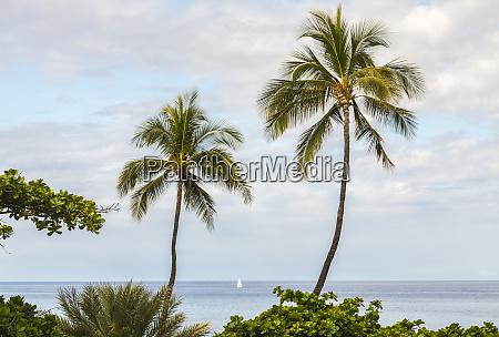 usa hawaii hapuna beach state park