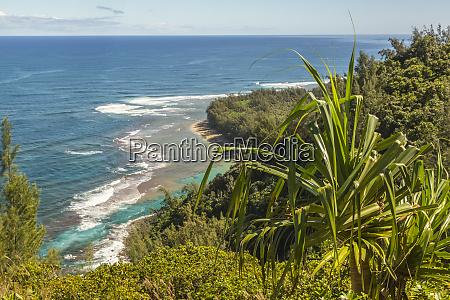 usa kauai coast coastline and ocean