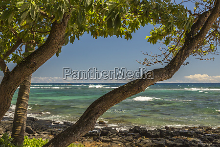 usa hawaii kauai lawai beach and