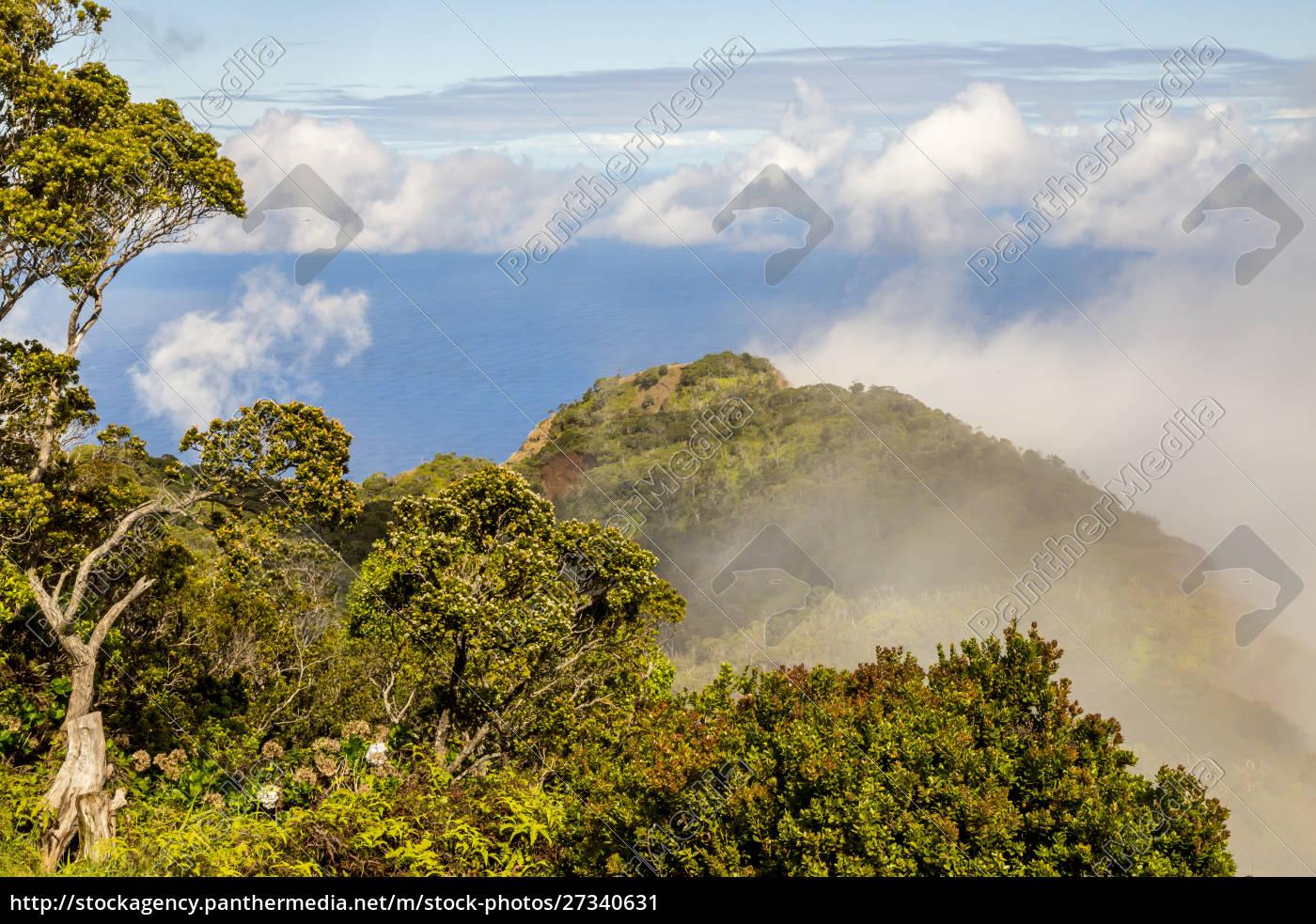 usa, , hawaii, , kauai., overview, of, koke'e - 27340631