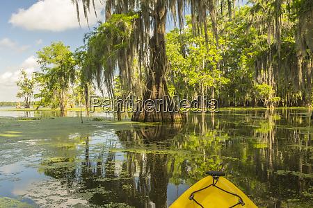 usa louisiana lake martin kayaking in