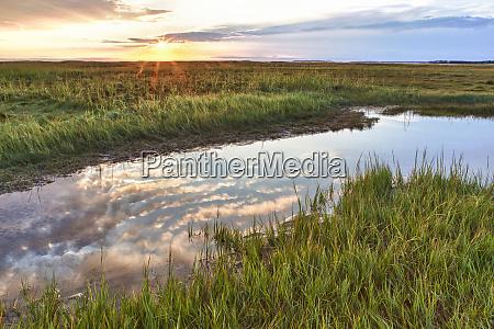 sunset over the tidal marsh at