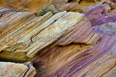 close up rainbow vista valley of