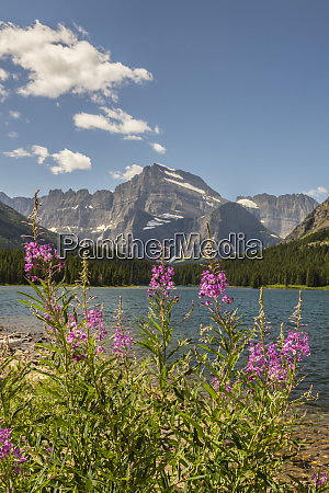 usa montana glacier national park grinnell