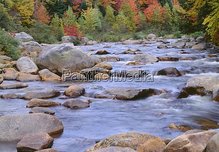 usa new hampshire white mountain national