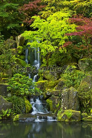 heavenly falls spring portland japanese garden