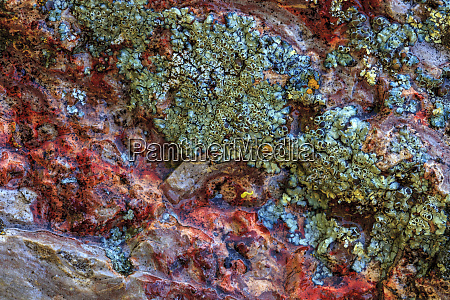 large naturally polished rock with lichen