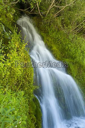 roadside waterfall near mt hood mt