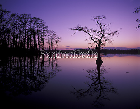 usa tennessee reelfoot national wildlife refuge