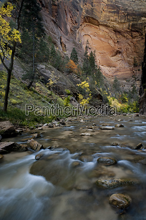 usa utah zion national park autumn