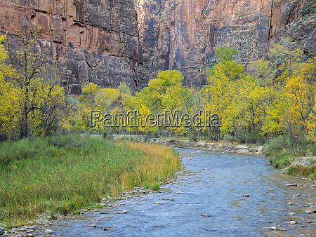 utah zion national park virgin river