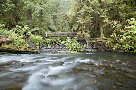 usa washington olympic national park barnes