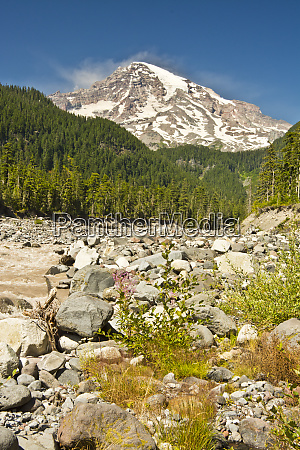 mount rainier and nisqually river mount