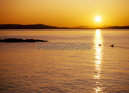 kayakers at sunset san juan island
