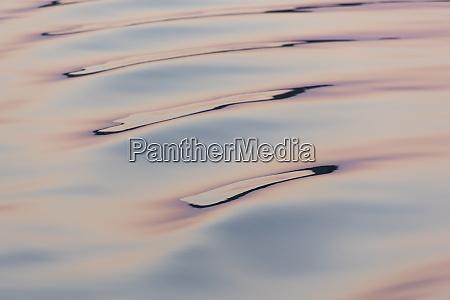 boat wake reflecting colors at dawn