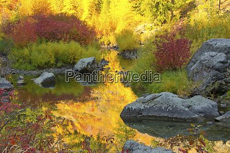 autumn foliage tumwater canyon wenatchee national