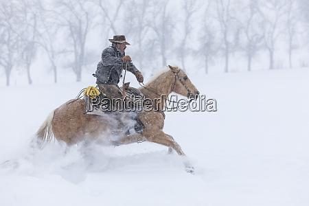 cowboy riding his horse wintertime hideout