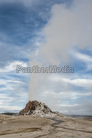 usa wyoming white dome geyser erupting