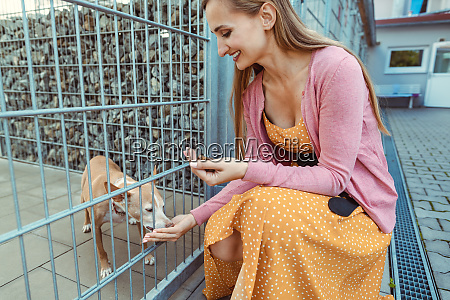 woman petting a dog in the