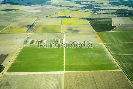 aerial view of cultivated green fields